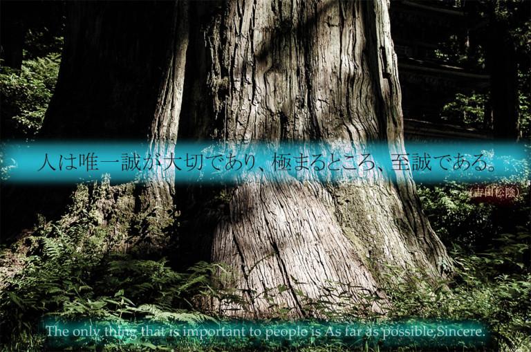 Shoin Yoshida Quote photo