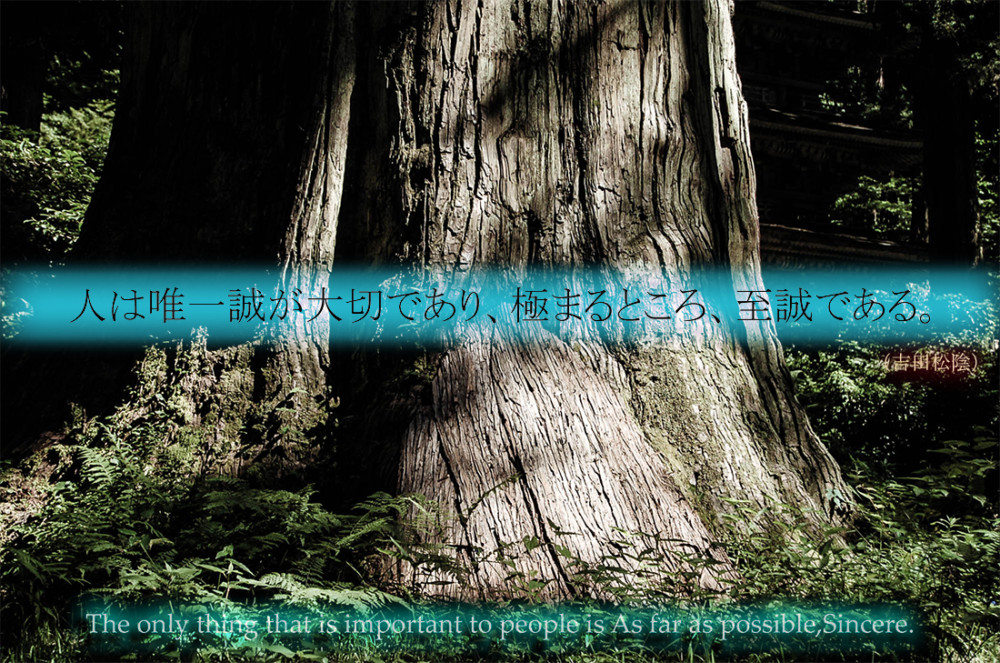 Shoin Yoshida Quote photo