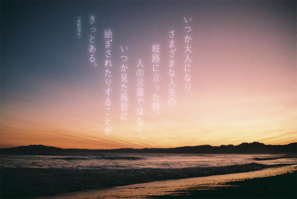 Quote photo