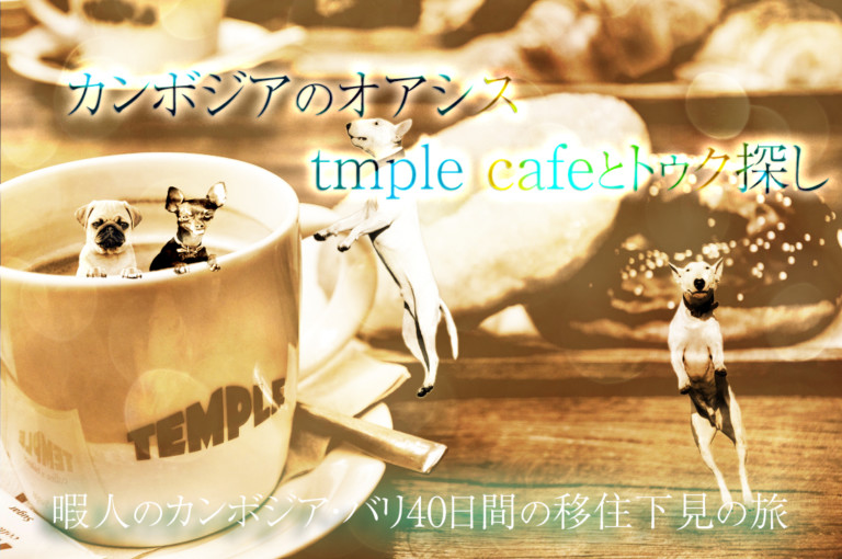 Oasis in Cambodia ・ Tmple cafe and Tuk search