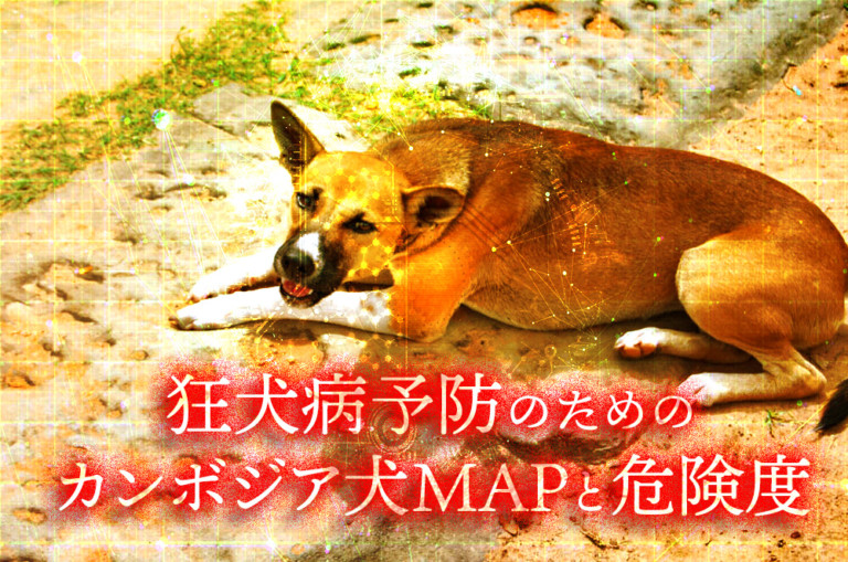 Cambodian dog MAP and risk for rabies prevention