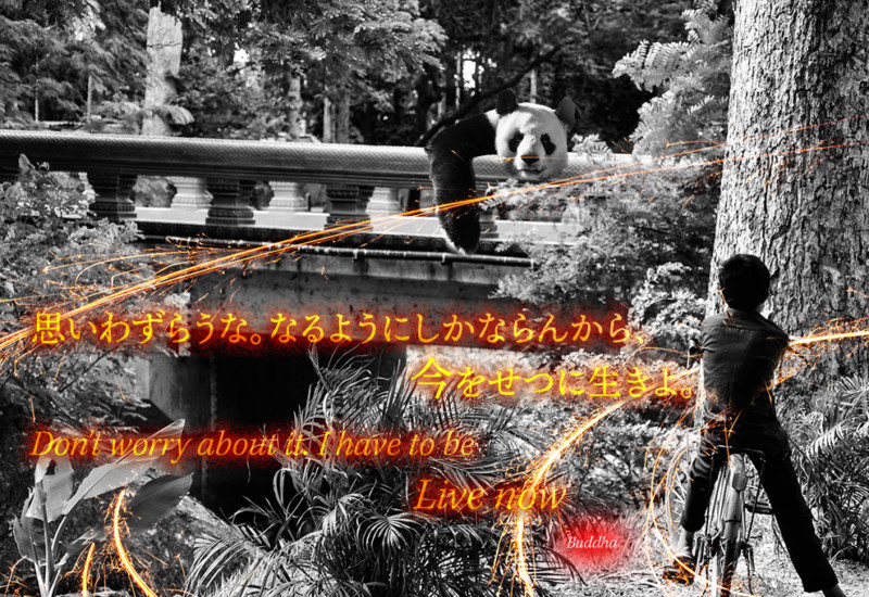 Don't worry about it.Quotes Photo