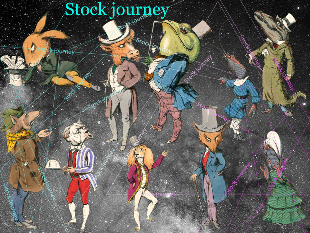 ANIMAL-Stock journey-png
