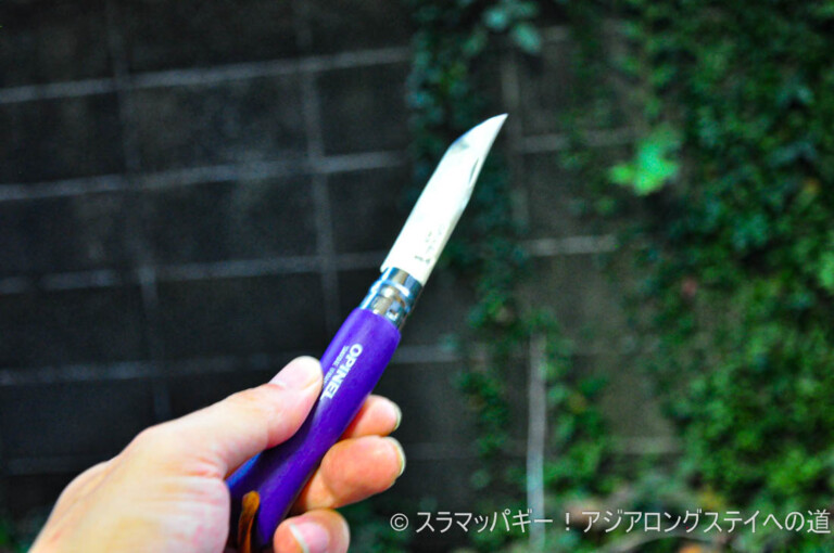 Opinel knives can be sharpened. The power of blue sticks and strops